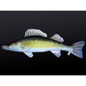 Gaby Plyšová Ryba Zubáč Giant 110 cm