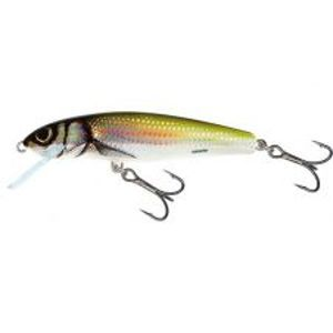 Salmo Wobler Minnow Floating Holo Bleak-6 cm 4 g