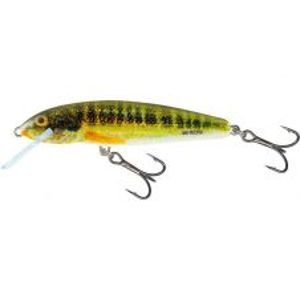 Salmo Wobler Minnow Floating Holo Real Minnow-5 cm 3 g